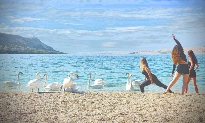 PHOTOS: Swans join dance postcard from Croatian island of Pag