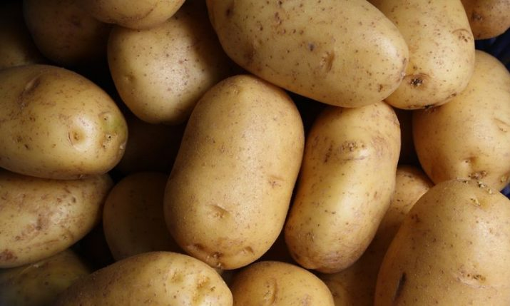 Croatia sees major increase in potato imports