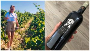 Black Dalmatian wine