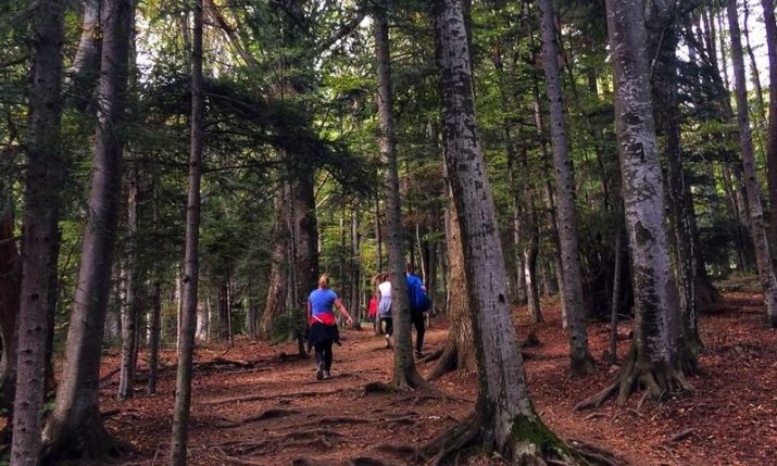 Walking trails and parks opened across Croatia to encourage physical activity