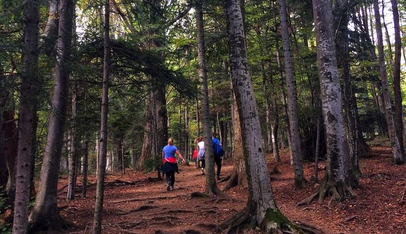 Group hikes to be organised across Croatia as of spring