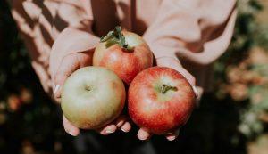 croatia apples