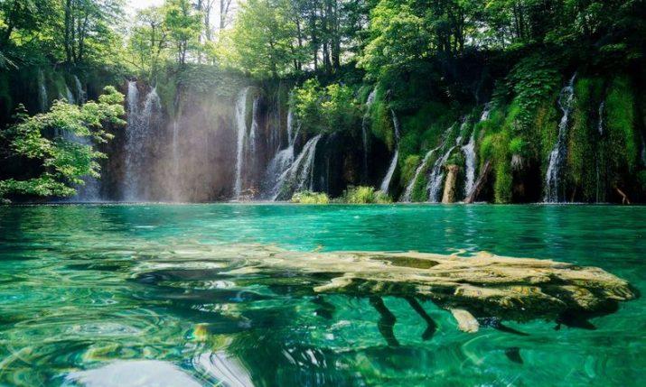WWF calls on Croatia to endorse Leaders' Pledge for Nature