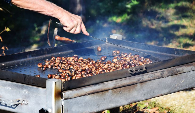 Traditional 23rd Zelina Chestnut Festival to be held on 11 Oct