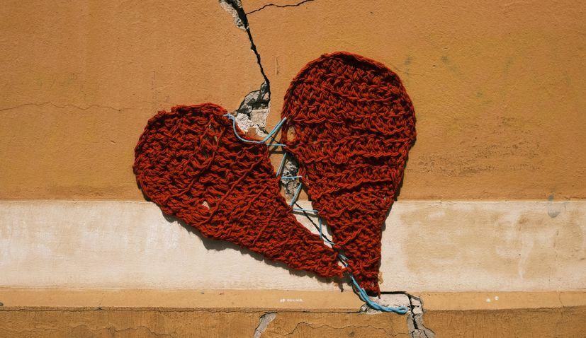 Zagreb heart project