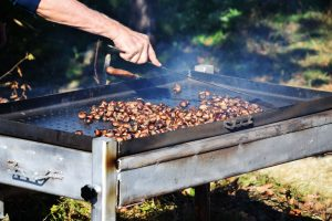 Croatian Chestnut Festivall