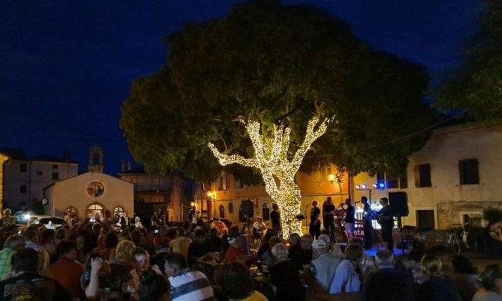'Najstarija Medulinka' named Croatia's Tree of the Year