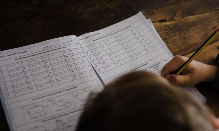 Croatian fourth-graders outperform in Math and Science