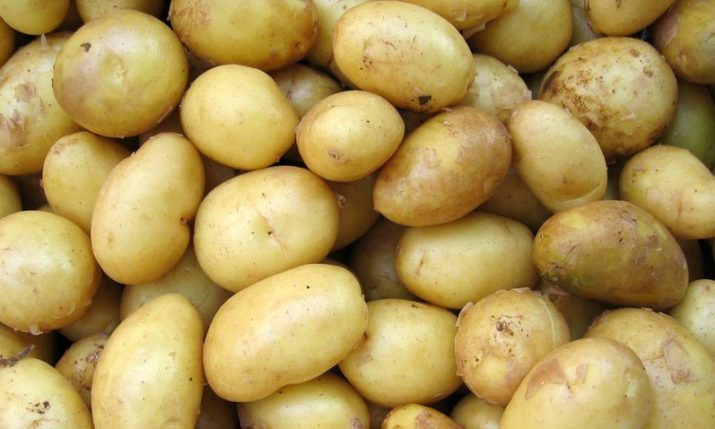 Croatia to export surplus potato to Ukraine