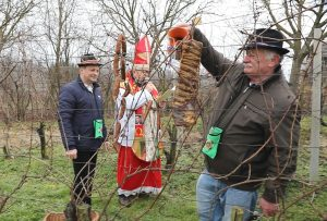 Croatian Traditions on Vincekovo celebrated on 22 January