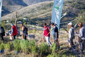 Croatian Scout Association wins European award for Boranka campaign