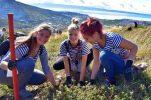 More than 100,000 seedlings planted across Dalmatia in Boranka campaign