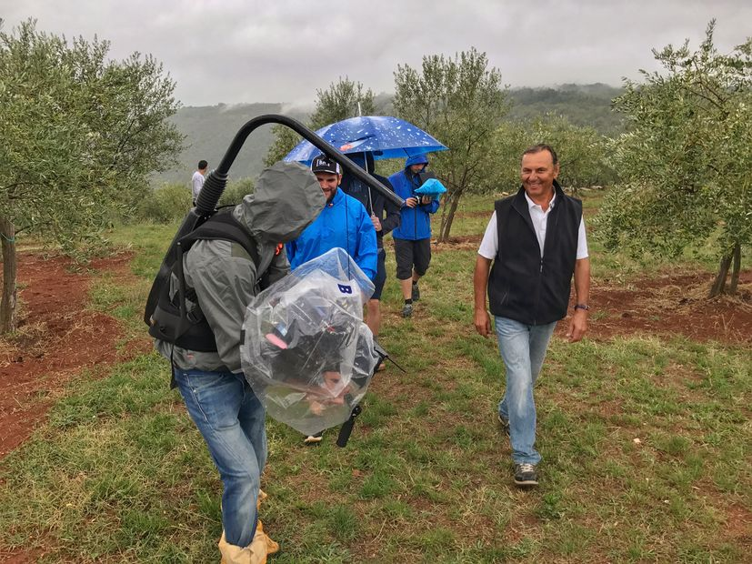 Family-run Croatian organic olive oil producers featuring in  series The Global Farm