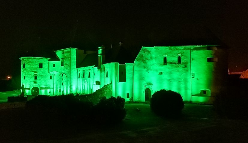 Nine cities in Croatia to take part in Global Greening to mark St. Patrick's Day