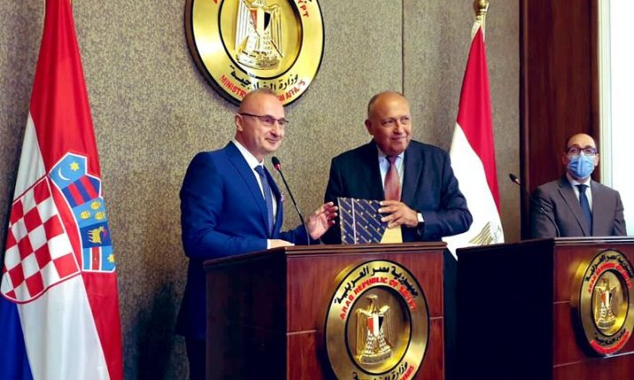 Croatia donates 100 books for new capital city of Egypt