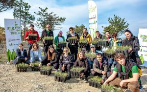 Scout association of Split plants 2,200 new trees
