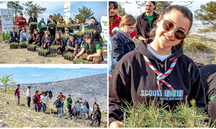 PHOTOS: Split scout project plants 2,200 new trees in fire-damaged areas