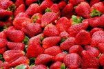 Vrgorac strawberries: What makes them so goodand how to recognise them