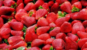 Vrgorac strawberries: What makes them so good and to recognise them