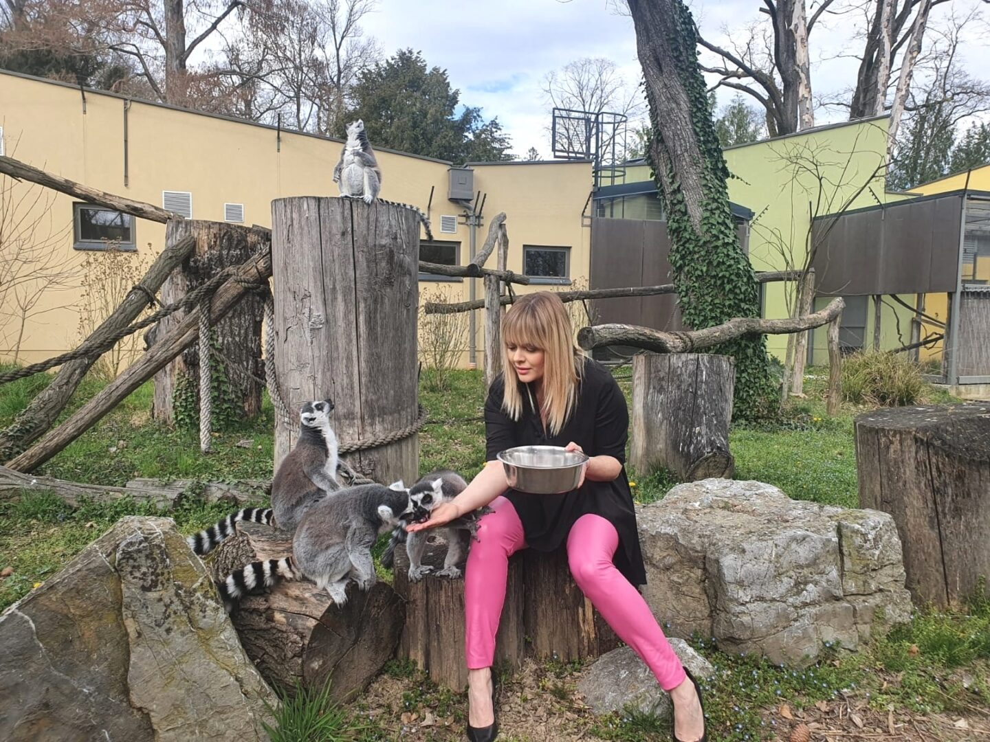 Zagreb Zoo gets its own anthem 'Zoo Song'