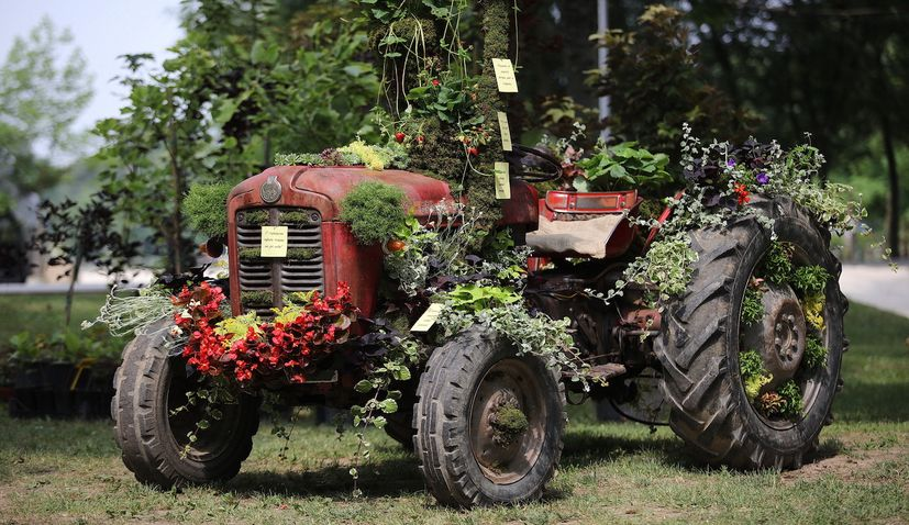 55th Floraart show to take place at Zagreb's Lake Bundek on 10-16 May