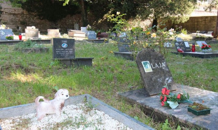 Pet cemetery in Rijeka – one of the world's oldest – to be used again