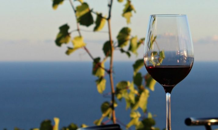 Pelješac Wine Festival: Cellars and restaurants in Croatia's famous wine region to open their doors