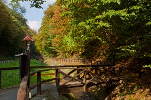 Bliznec Forest Trail: First educational trail in Croatia fully adapted to people with disabilities makes UNWTO manual