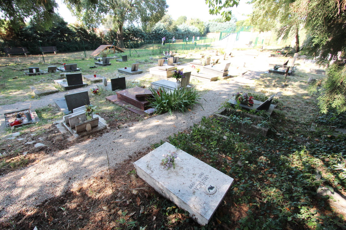 Pet cemetery in Rijeka - one of the world's oldest - to be used again