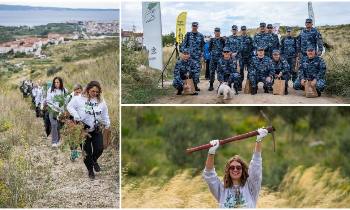 Croatian Army and veterans join afforestation action in Dalmatia
