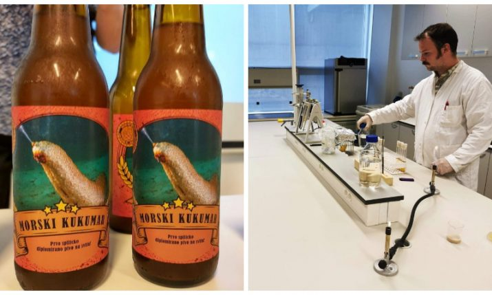 Croatian scientists make beer from yeast isolated from the sea