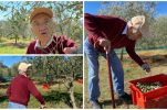 Croatia's oldest olive oil producer still going strong at age 98